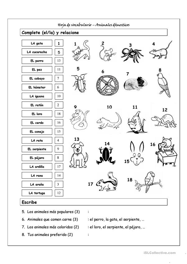Vocabulario - Animales domésticos